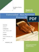 PROCESO-DE-EJECUCION.docx