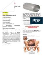 10 Fistula Vaginal