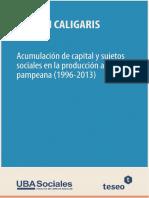 Acumulación-de-capital-y-sujetos-sociales-en-la-producción-agraria-pampeana-1996-2013-1509706969.pdf