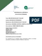 BMC - Curso y Programa