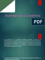 Creatin in A
