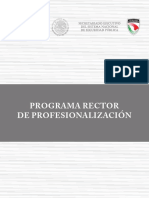 PROGRAMA RECTOR DE PROFESIONALIZACION 2017.pdf