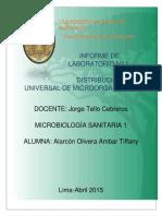 266812628 Distribucion Universal de Microorganismos