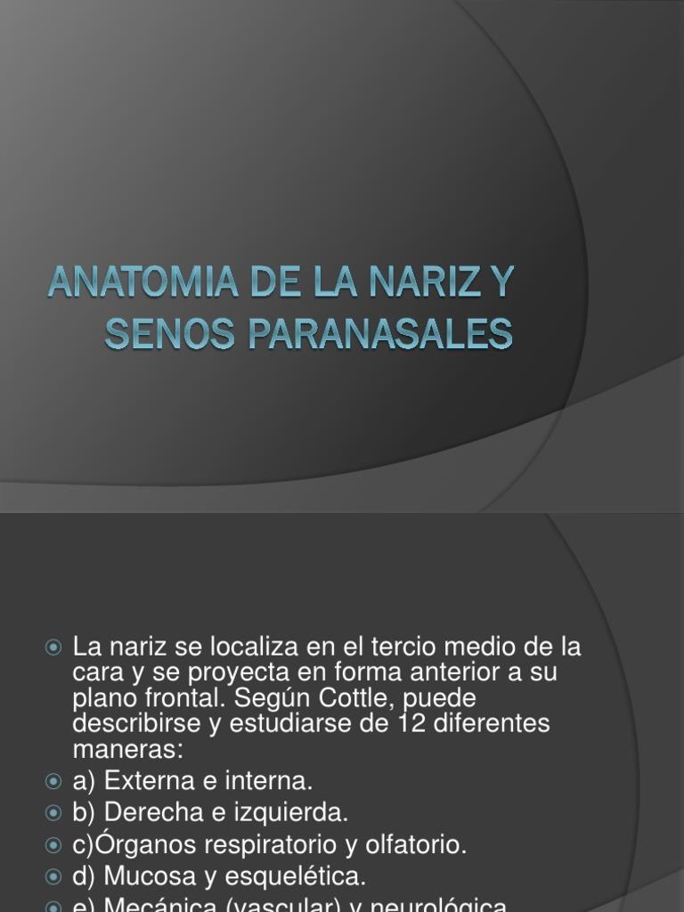 Anatomia de La Nariz y Senos Paranasales