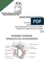 2. Anatomia Humana Estudiosmyc
