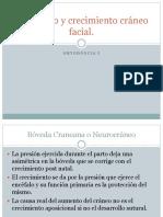 Desarrollo y Crecimiento Cráneo Facial v2