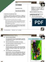 255297349-Plan-de-Zonificacion-y-Uso-de-Suelo.docx
