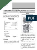 III y IV Bimestre-BIOLOGÍA-4TO-SECUNDARIA.doc