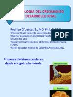 fisiologadelcrecimientoydesarrollofetal