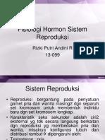 Fisiologi Hormon Sistem Reproduksi