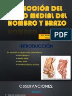 Disección de miembro toracico.pptx