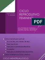 2017112_21318_Ciclo+menstrual+reform