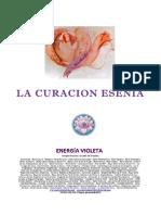 LA CURACION ESENIA.pdf