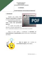 5º Conteúdo - Como Identificar Oportunidades e Novas Idéias de Negócios..pdf