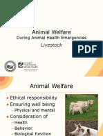 10 Animal Welfare Livestock JIT