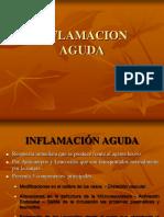 7.-INFLAMACION AGUDA