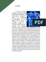 Inmunologia Parte 7 (1)
