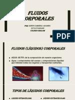 Fluidos Corporales (SIMÓN)