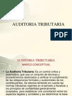 AUDITORIA-TRIBUTARIA2