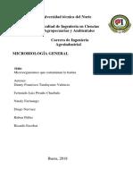 Grupo 4 Microorganismos Que Contaminan La Harina