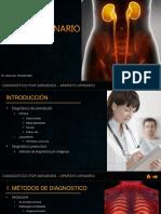 URINARIO.pptx