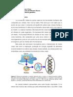 Células e material genético