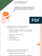 analisis cualitativo