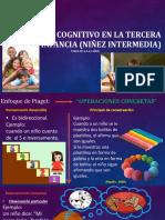 Desarrollo Cognitivo en La Tercera Infancia (Niñez