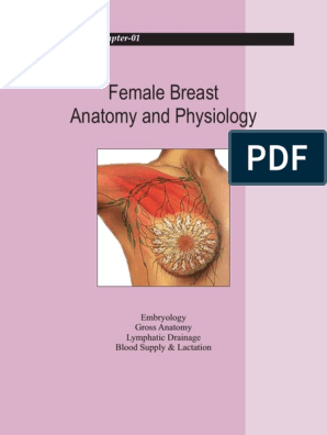 4 1 Breast Mammography Free 30 Day Trial Scribd