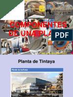 Capitulo 3 componentes de una planta.ppt