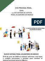 Nuevo Sist de Just Penal y Partes Juridicas Que Intervienen