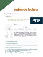Comprension Lectora. 4to Año-new