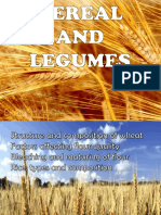 Chapter 6- Cereals and Legumes