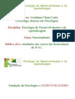Aula 5 Estruturalismo