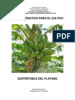 Manual Platano