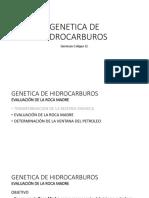 GENETICA DE HIDROCARBUROS (Continuacion).pptx