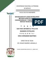 Tesis_Licenciatura_Erick_Hernandez_Martinez_Ing_Petrolera.pdf