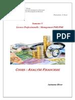 Analyse Financière PDF