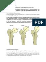 Investigacion a Patologia de Cadera
