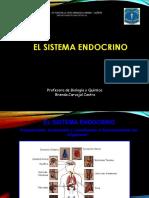 Sistema Endocrino 2018