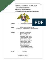 GENETICA -DESARROLLO HUMANO.docx
