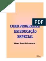Como Programar Em Educação Especial _jésus Garrido Lanvidar