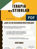 Terapia Vestibular Organizada