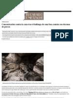Concentración Contra La Caza Tras El Hallazgo de Una Fosa Común Con Decenas de Perros