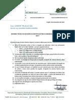 Informe Técnico de Revisión de Motor Eléctrico Sumergible de 75 Kw 100 Hp 440 V