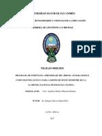 Programa de Enseñanza Aprendizaje Del Idioma Aymara Básico