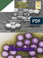 109886891-TEMA-20-Adenovirus-y-Parvovirus (1).pdf