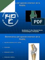 Biomecánica Del Aparato Extensor de La Rodilla