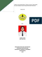 Pelanggaran Regulasi Oleh Pt Riau Andalan Pulp and Paper