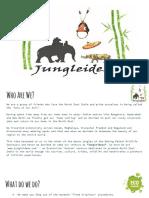 Jungleideas Presentation